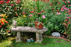 Garden Bench and garden shoes