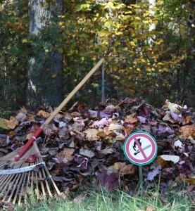 ne pas bruler les feuilles mortes