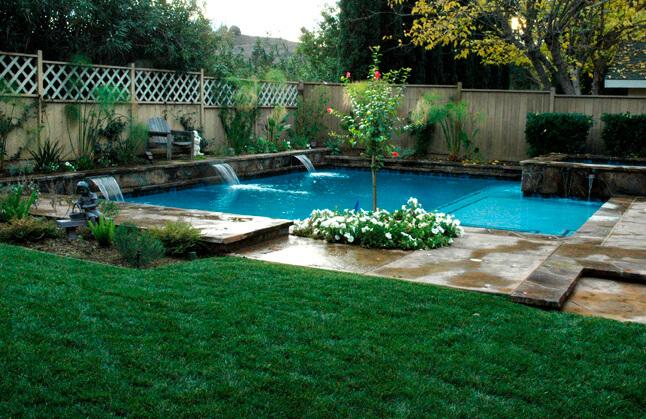 Quoi planter autour de sa piscine ?