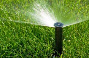 arrosage pelouse jardin gazon