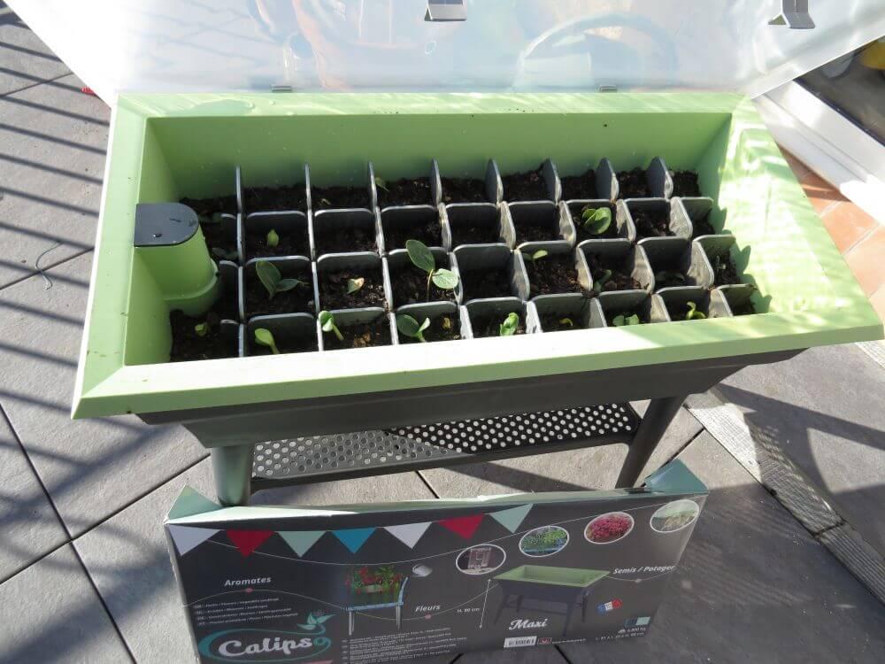 Test de la jardinière mini serre double paroi version Combi de chez ...