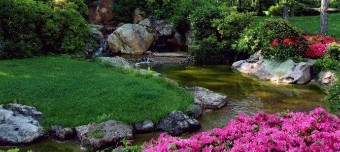 7 conseils d'aménagement paysager pour réaliser votre jardin de rêve